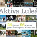 aktiva-lulea-2